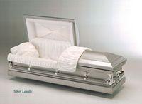 Silver Lasalle