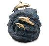 Dolphins in Harmony